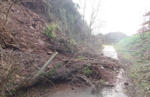 Landslide has blocked footpath.