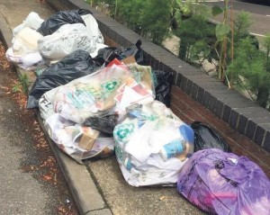 Bin Bags: a scene similar to this was left in Cromie Avenue
