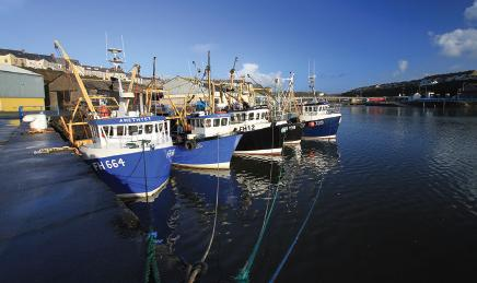 Investment in new facilities will boost prospects for local fishermen