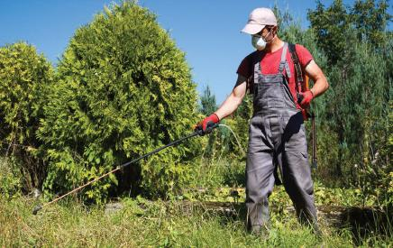 Fighting a green war on pests.