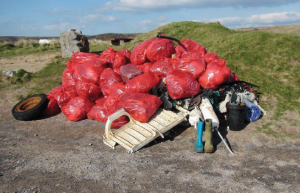 52 bags: Plus other miscellaneous debris was collected