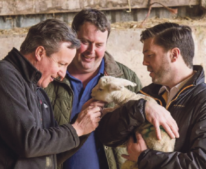 Lamb exports could be affected by Brexit: David Cameron