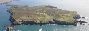 Skomer: famed for its wildlife and for the survival of its ancient field systems