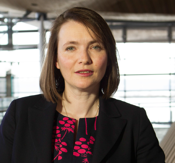 Kirsty Williams: Endorses underlying principles