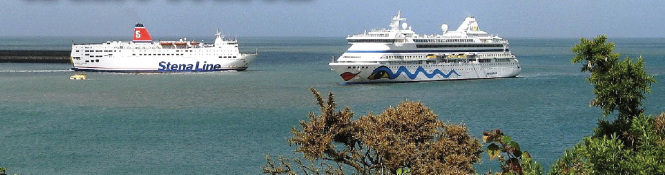 'A success': 19 ships visited the harbour during the 2016 cruise season